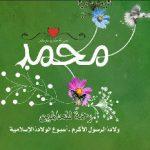 ابزار نمایش صفحه حمایت از حضرت محمد (ص)